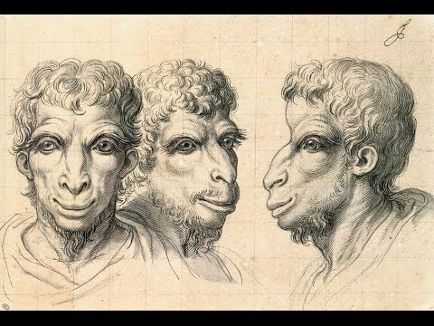 Charles Le Brun Paintings & Illustrations!