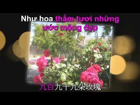 999 Roses Karaoke