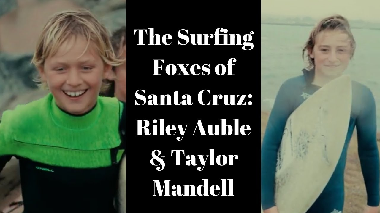 The Surfing Foxes of Santa Cruz