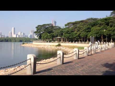Shenzhen bay in the morning