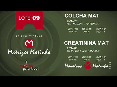 LOTE 09 Matrizes Matinha 2019