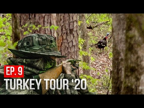 MID-DAY GOBBLER In MISSISSIPPI! - Public Land Turkey Hunting