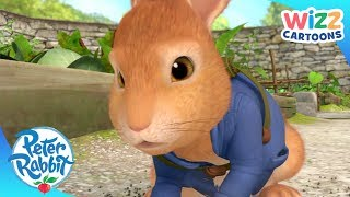 Peter Rabbit | Trapped in the Garden | Action-Packed Adventures | Wizz Cartoons