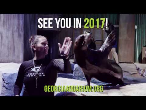 2016 Year In Review: Georgia Aquarium
