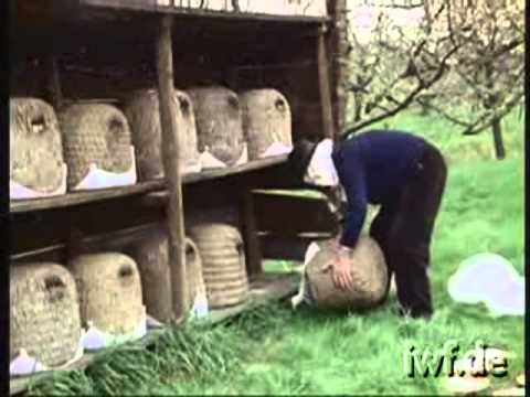 Heathland Beekeeping   1   Spring Work in a Heather Skep Apiary xvid