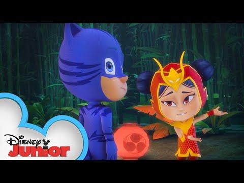 PJ Masks Surprise | PJ Masks | Disney Junior