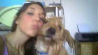 Il mio cane sampdoriano caccoolino mio ti voglio bene!!