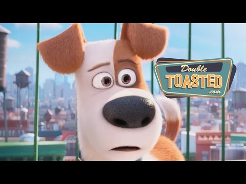 THE SECRET LIFE OF PETS MOVIE REVIEW - Double Toasted Review