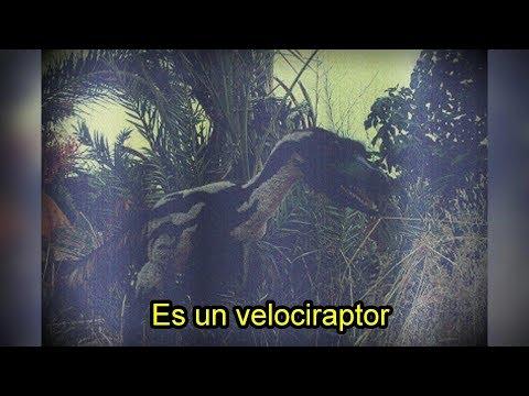 Dice que viajó al pasado y vio dinosaurios