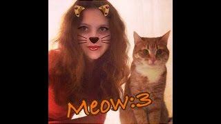 Муррр:3 Кошачий Влог ^_^ // Как Назвать Кота