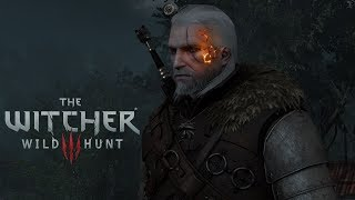 The Witcher 3 Mods #36 Hearts of Stone Burning Mark & better Everything