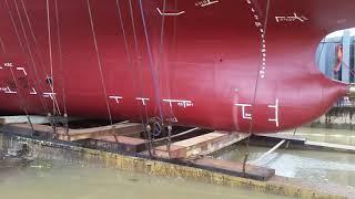 Hạ thủy tàu phà rừng. hoàng khang