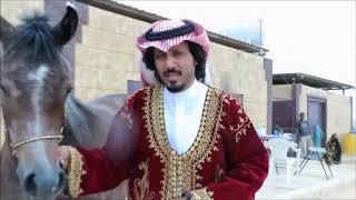 قصص من تاريخ الخيول العربية حسان الجهني عبيد العوني Arabian Horse