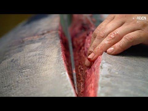 $11000 Tuna SUSHI SASHIMI - Tokyo Tsukiji Fish Market JAPAN