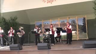 Dziesmu svetki vermanes darza liele estrade 5.07.2013 - 00391
