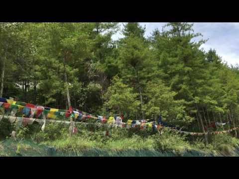 ravens' song @ buddha point-Thimphu Bhutan