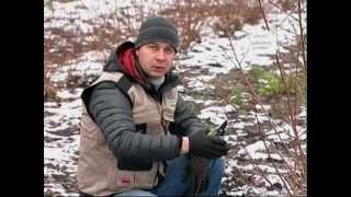 """Телепрограмма Наш Сад №1 НПО """"Сады России"""""""