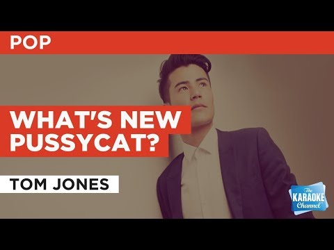 What's New Pussycat? in the style of Tom Jones | Karaoke with Lyrics
