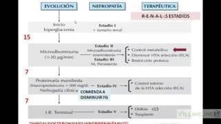 VIRTUAL NEFROLOGÍA RIÑON Y ENFERMEDADES SISTEMICAS