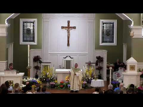 Homily for The Easter Vigil ~ ...