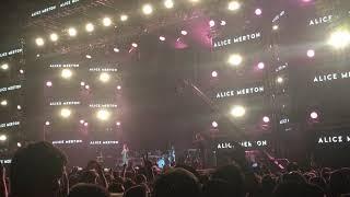 Baixar Alice Merton No Roots