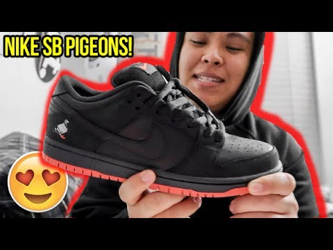 the latest 722c6 4cfbd NIKE SB  BLACK PIGEON  REVIEW!!! (ARE DUNKS COMING BACK !)