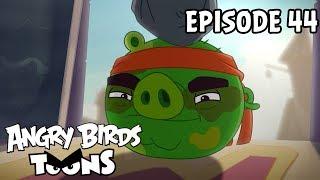Angry Birds Toons | Hambo - S1 Ep44