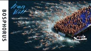 Bosphorus Cross Continental Swim 2016. Как Влад и Макс стали интерконтинентальными пловцами
