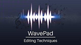 wavePad Audio Editor Tutorial  Editing Techniques