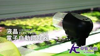 液晶電子自動餵食器 |草影開箱