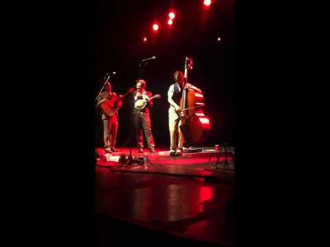 "Paul Kowert of the Punch Brothers bass solo before ""Flippen"""