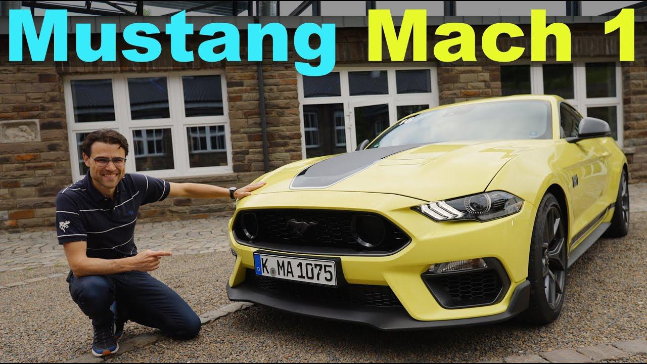 Ford Mustang Mach 1 REVIEW 460 hp 5.0 l V8 manual 🎱 🔥 🏁