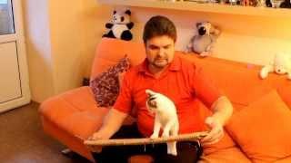 Угловая когтеточка для кошки