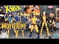 Marvel Legends TIGER STRIPE WOLVERINE X-Men Wave 3 Apocalypse BAF Figure Review