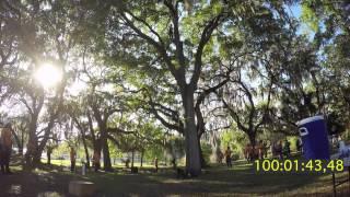 itcc tree climbing championship 2015 part 1