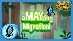 Animal Jam's aMAYzing Migration to a New Name!