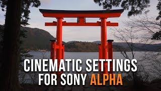 BEST Video Settings for Sony a7III a7RIII a6300 a6400 a6500   FREE Cinematic Tutorial