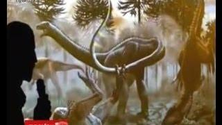 พบฟอสซิลไดโนเสาร์ใหญ่สุดในอาร์เจนตินา