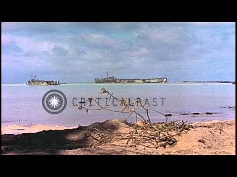 Dead Japanese soldiers in an anti tank trench in Makin Islands, Kirabati during W...HD Stock Footage