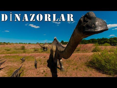 Dinozorlar Hakkında Sizi Çok Şaşırtacak İlginç Bilgiler