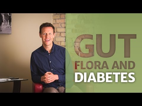 Artificial Sweeteners, Gut Flora & Diabetes