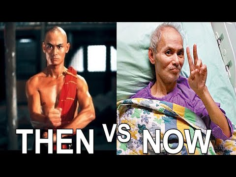 Top 10 Kung Fu Movie Stars THEN And NOW