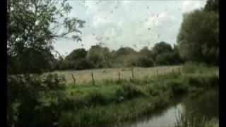Devon whirlwind