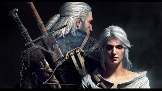 The Witcher 3: Wild Hunt - God Mode Glitch (Unlimited Stat Increase)