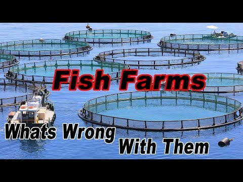 What Problems Are There With Fish Farms(Aquaculture)? By Judith Weis