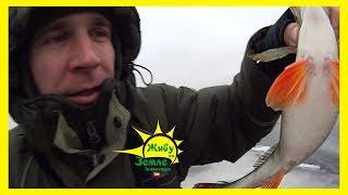 10км по льду Как ищется трофейная рыба Зимняя рыбалка
