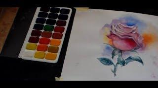 Акварель. Как нарисовать розу поэтапно для новичков
