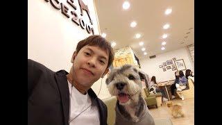 Aspiring K-pop Trainee's Weekend at Hongdae