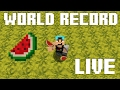 MINECRAFT WORLD RECORD ATTEMPT - MOST MELONS CRAFTED IN 8 HOURS - (Single session)