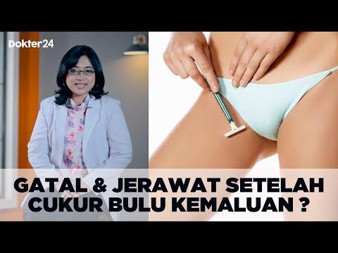 Dokter 24 - Gatal & Ada Jerawat Setelah Cukur Bulu Kemaluan ?